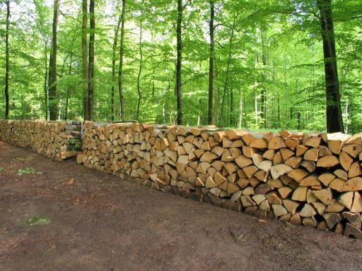 Le processus de livraison du bois à Paris