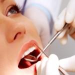 Fabriquer une dent à partir d'un mélange de cellules dentaires et de cellules souches