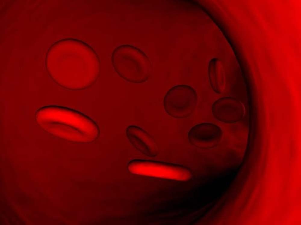 Un médicament contre les cancers du sang bientôt autorisé