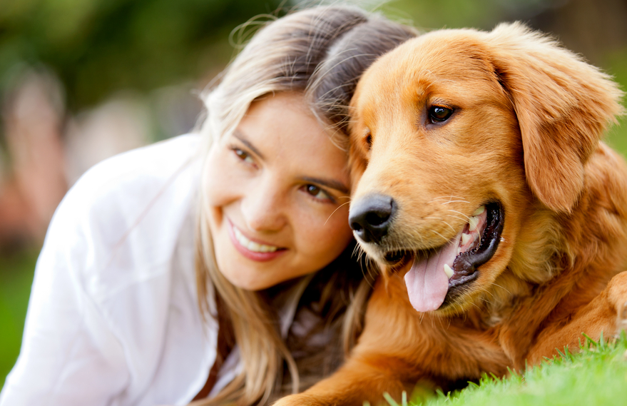 Ne cherchez plus votre solution de garde de chien dans le Val d'Oise!