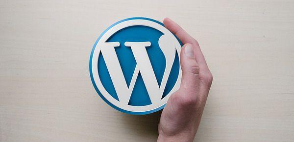 WordPress, un CMS suffisamment optimisé pour le SEO ?