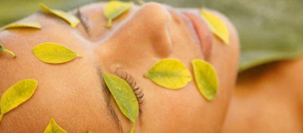 La peau absorbe des kilogrammes de produits cosmétiques
