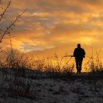 Fusil de chasse : le poids idéal